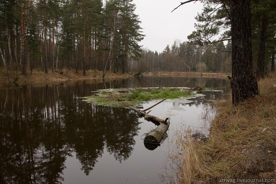 Орехово-Зуевский район пейзаж река Нерская