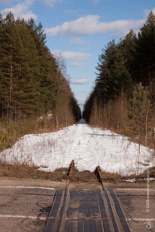 Закрытие Шатурских узкоколеек, переезд в Мишерони