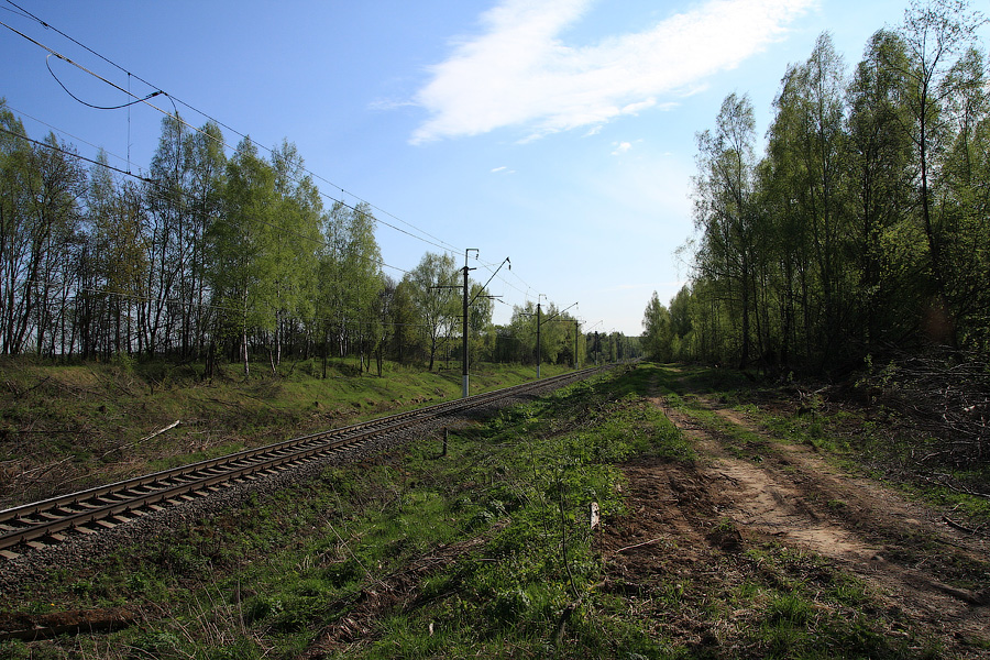 Красноармейская ветка, вид в сторону платформы Дальний