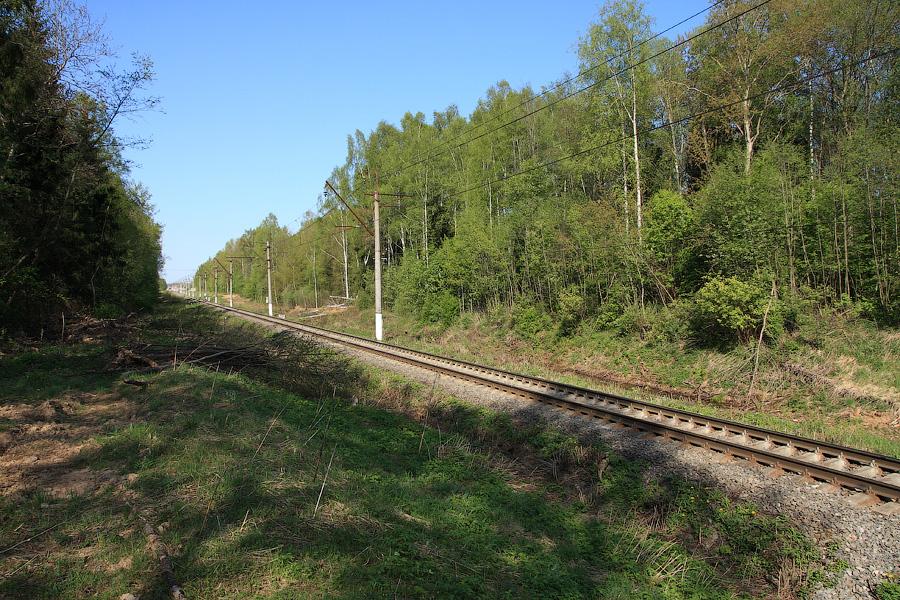 Красноармейская ветка, вид в сторону платформы Рахманово