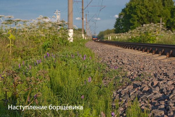 Красноармейская ветка, Московская железная дорога