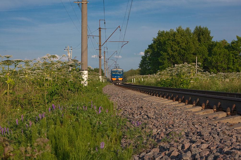 Красноармейская ветка, Московская железная дорога, электропоезд ЭР2-1205