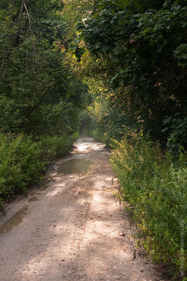 Грунтовая дорога от Санино до Песьян