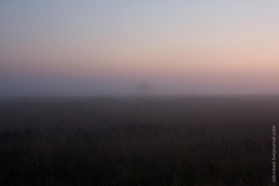 Туманные летние вечера Подмосковья