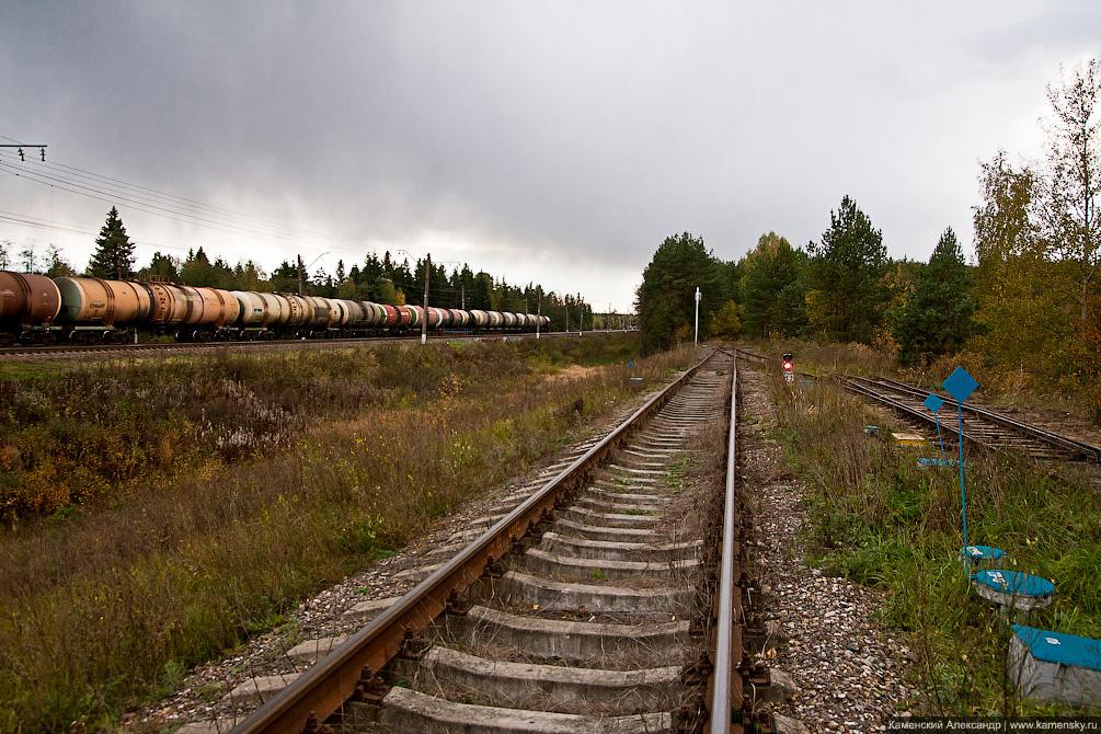 Узкоколейка, Киржач, УЖД, Першино, Владимирская область, заброшка