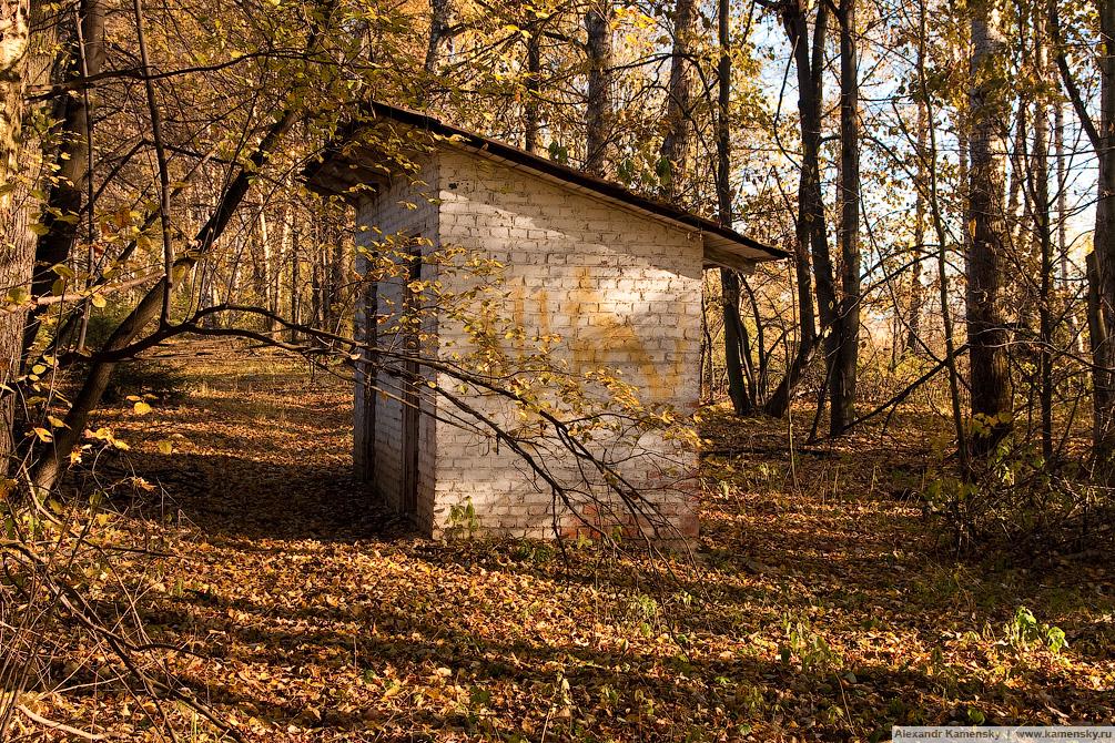Пейзажные фотографии, фотография железной дороги, Ярославское направление, остановочный пункт, осенний пейзаж, осень и транспорт