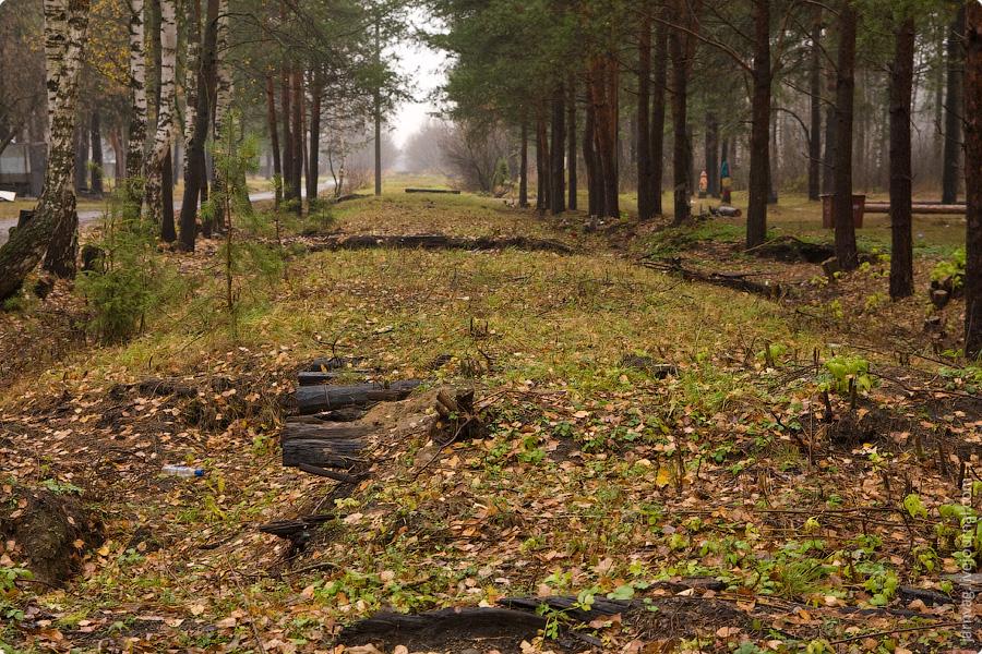 Осень, БМО, участок Поточино - Орехово - Дулево