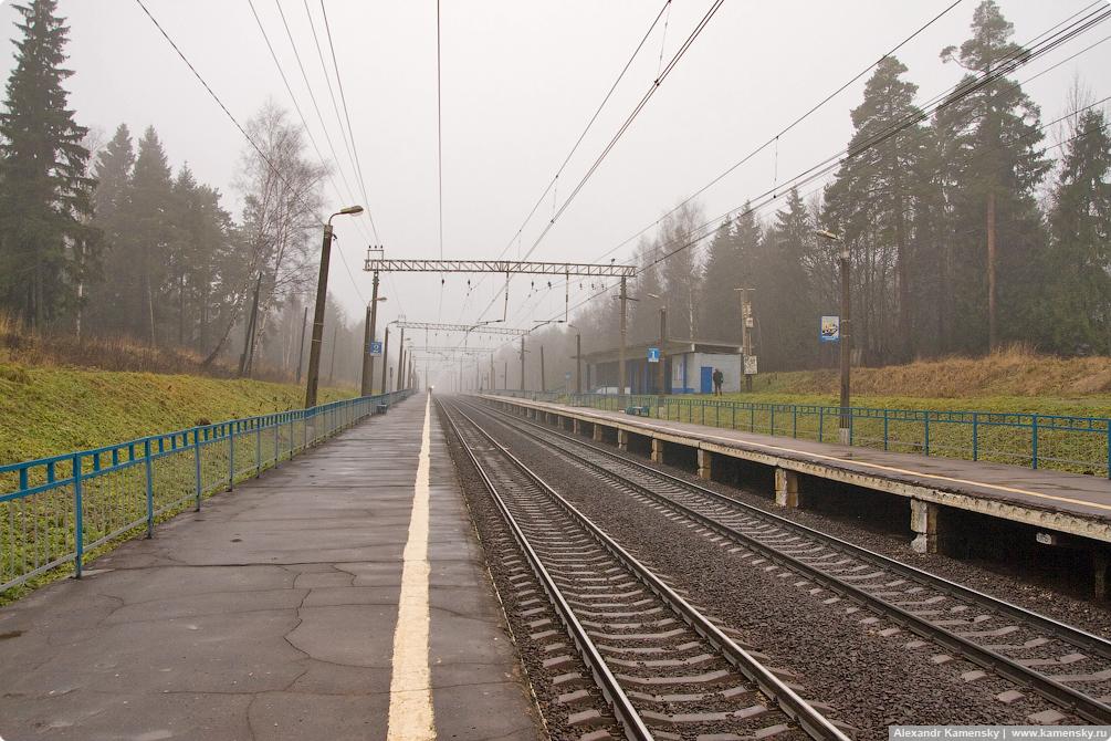 Московская область, Ярославское направление, МЖД, платформа 43 км