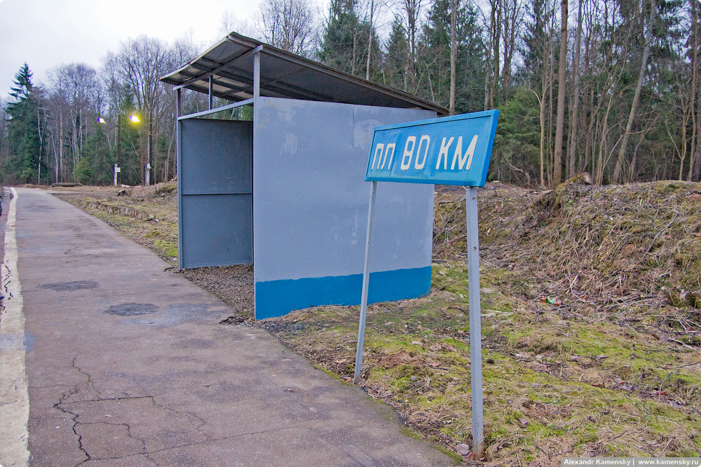 БМО, Савеловская дорога, Икша, Яхрома, Турист, Морозки, Иванцево, Белый раст