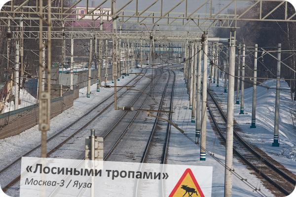 По маршруту Москва-3 - Яуза, Ярославское направление
