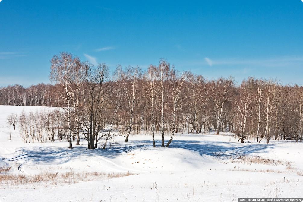Весенние поля, Московская область