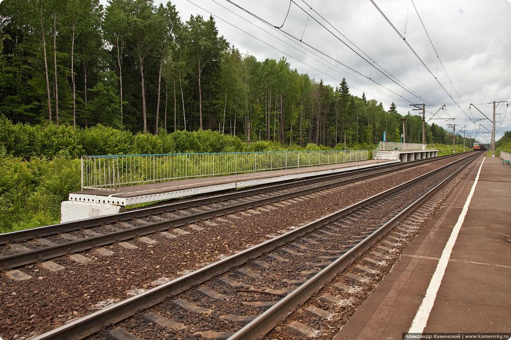БМО, МЖД, платформа 250 км