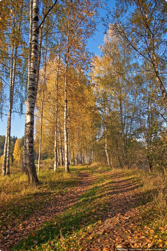 Октябрь - от звенящего утренника до теплого дня