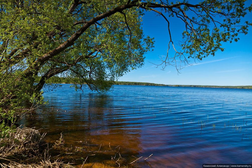 Комплекс Завидово, Тверская область