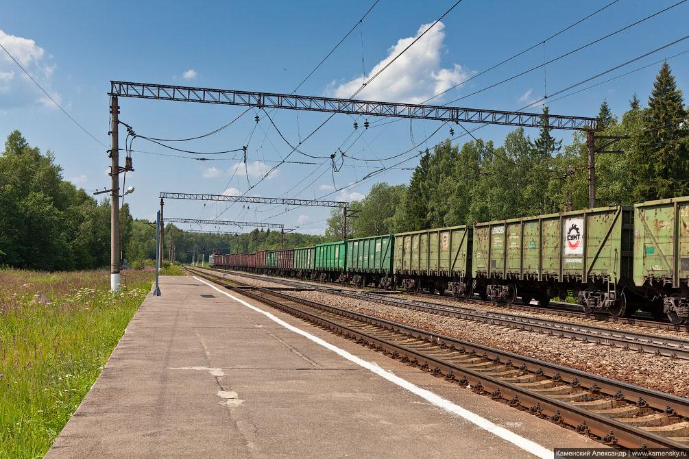 Кривыми тропами БМО от платформы 68 км до станции Костино