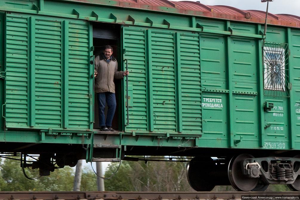 Колычево, село Верзилово, Ступинский район, Михнево, электропоезда, Московская область