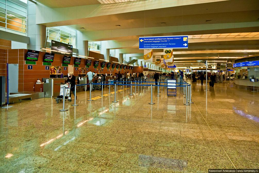 Аэропорт Шереметьево, 2011 год, Терминал D