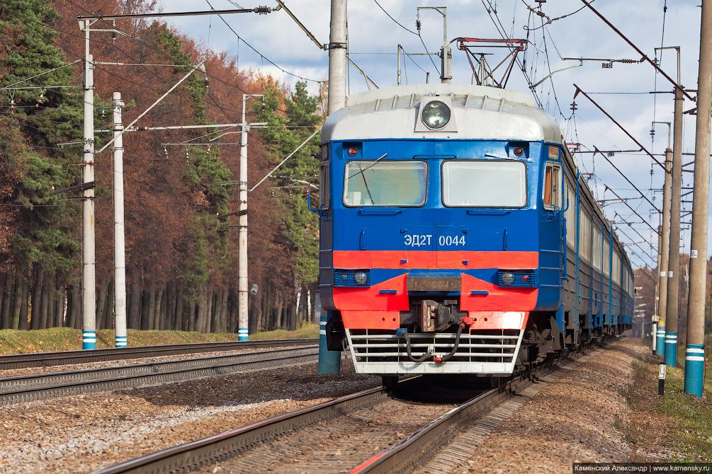 Ярославское направление, платформа Строитель, платформа Рахманово, кот, электричка
