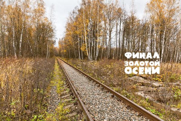 Москва, Подъездной путь, станция Белокаменная, МОЖД, Мыза Раёво, ППЖТ