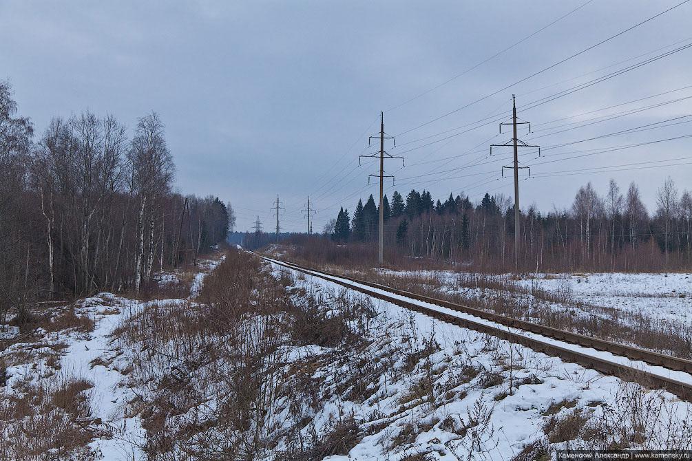Железнодорожная линия, ветка на ГАЭС, Сергиево-Посадский район, зима, пейзаж, деревня Шубино