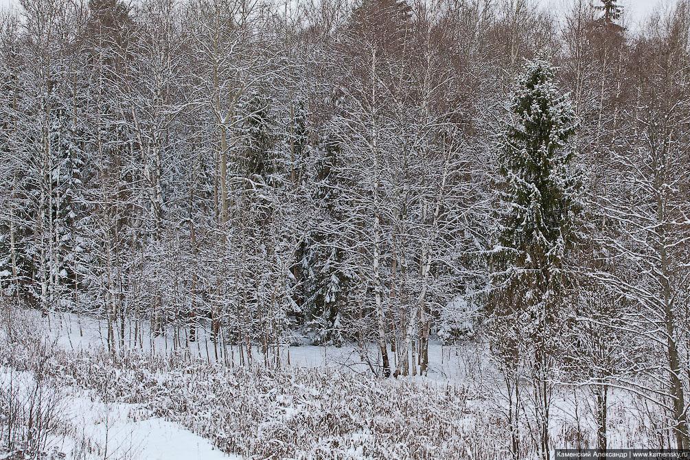 Начало года, железная дорога, ночные фотографии, январь, интересные кадры