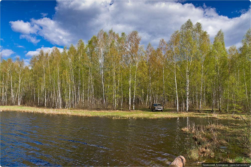 Ногинский район, село Воскресенское, Лесные озера, Московская область