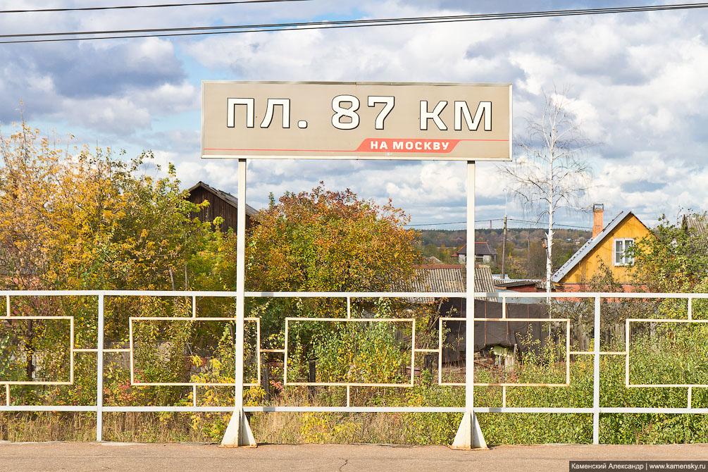 Горьковское направление, весна, платформа Кабаново, пес, собака