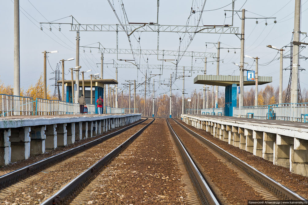 Московская область, Ярославское направление, Фрязевская линия, платформа Лесная, Фотографии