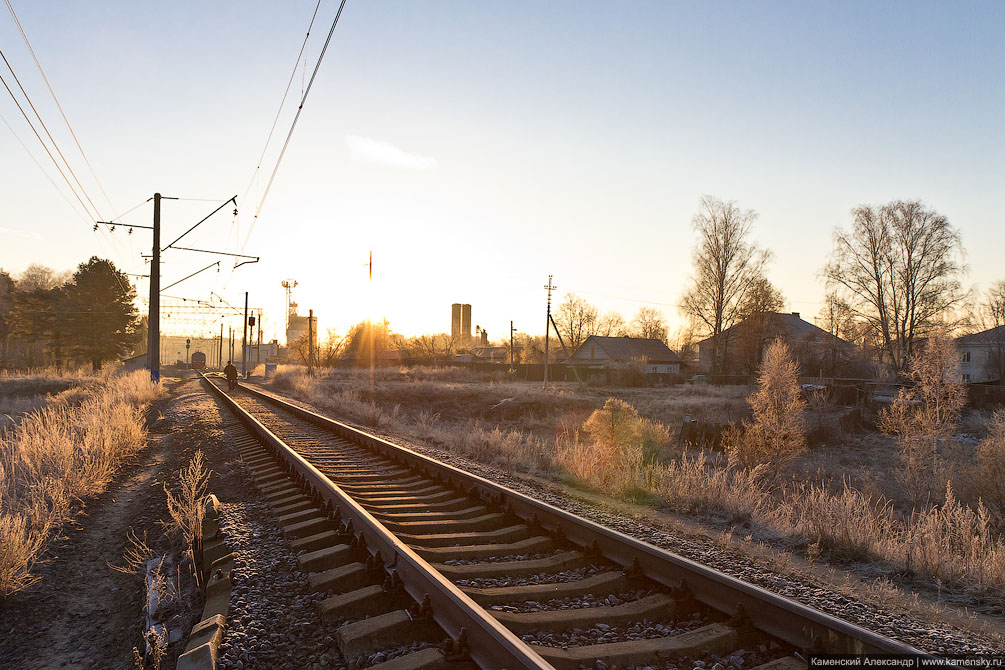 Подмосковье, ноябрь, заморозки, солнце, иней, железная дорога, хорошо
