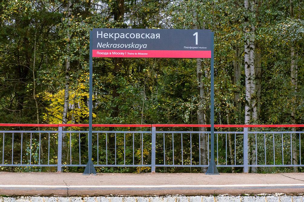 Московская область, Савёловское направление, Лобня, Долгопрудный, Некрасовская, Водники, осень, железная дорога, поезда, электрички, платформы, станции, berlin, IC DB class 297