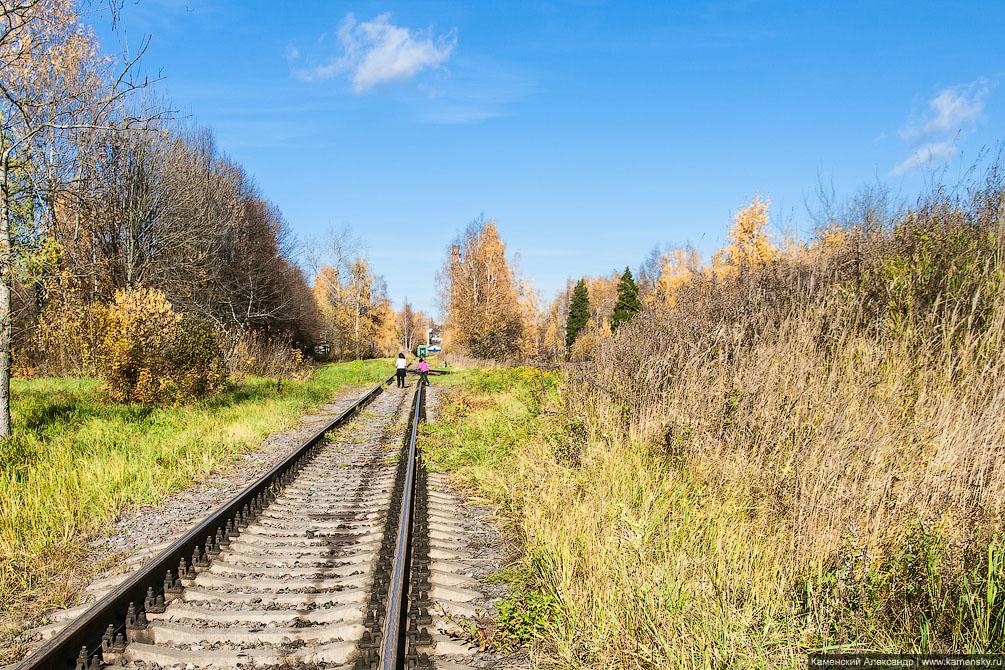 платформа, Московская область, Ярославское направление, железная дорога, Красноармейск
