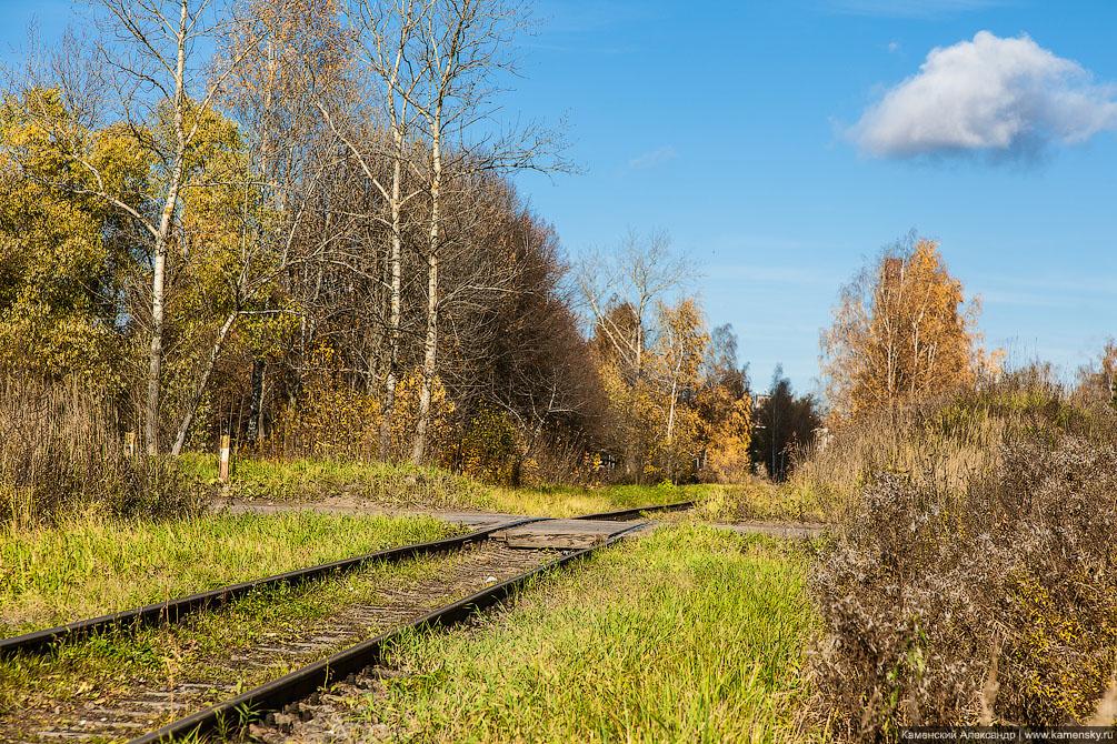 осень, Московская область, Ярославское направление, железная дорога, переезд, Красноармейск