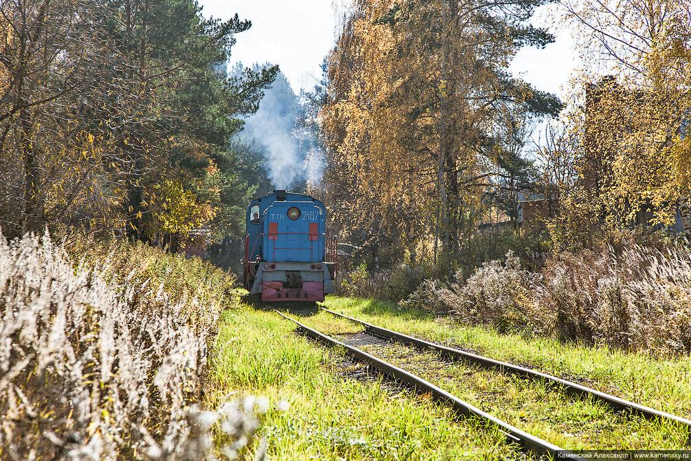 осень, ТГМ4, Красноармейск, Московская область, Ярославское направление, железная дорога