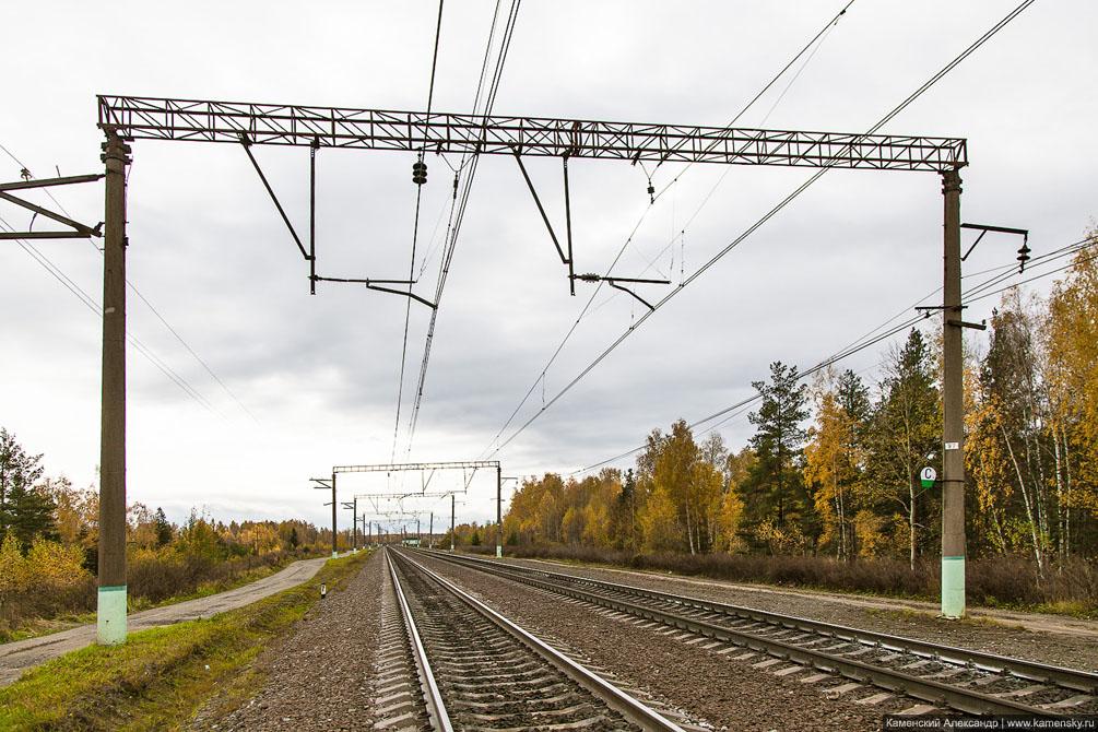 БМО, Киржач, Санино, железная дорога, Владимирская область, Ликино-Дулёво, Руново