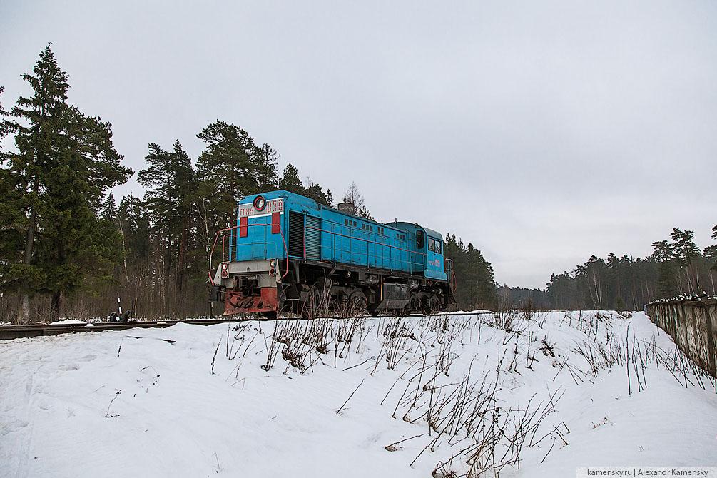Московская область, Ярославское направление, Красноармейская ветка, БМО, зима, тепловоз, электропоезд, снег, туман