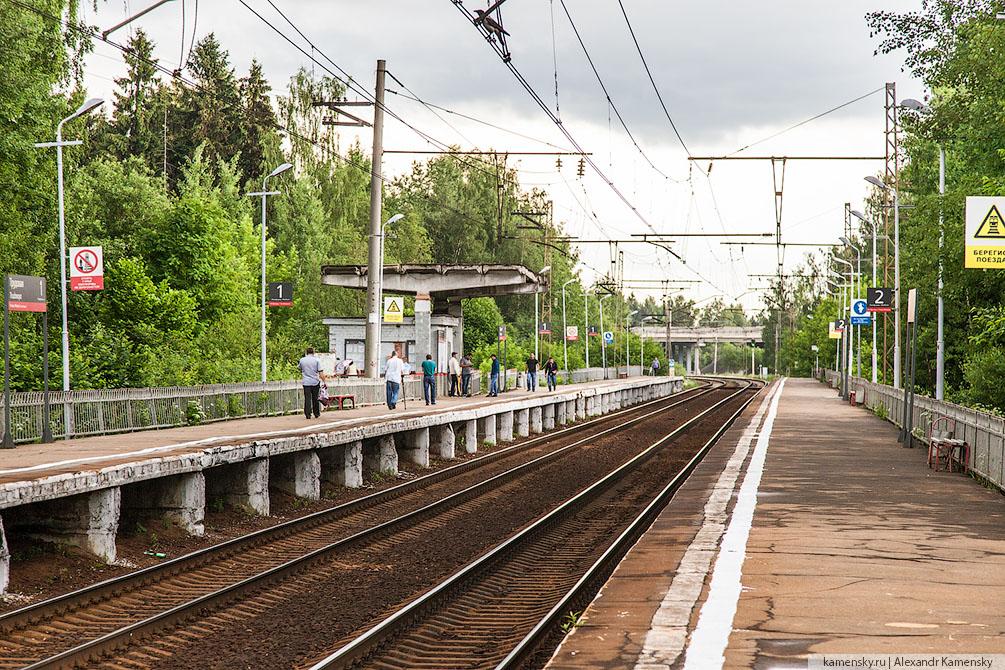 Московская область, Савёловское направление, платформа Трудовая
