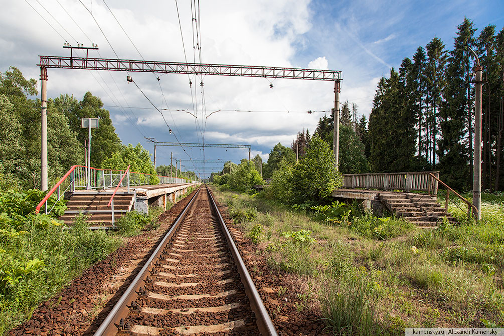 Московская область, Савёловское направление, платформы и станции, лето, хорошо