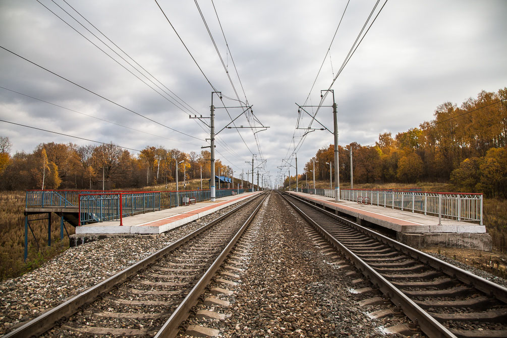Ярославская область, Ярославское направление, Берендеево, осень, железная дорога, поезда, электрички, платформы, станции