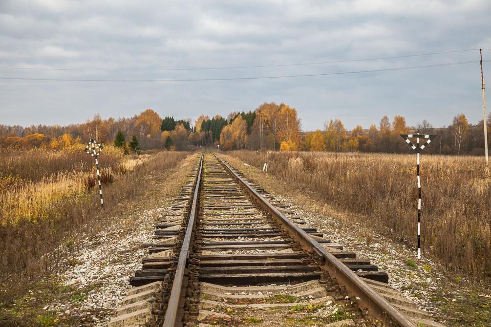 Ярославская область, Ярославское направление, Берендеево, осень, железная дорога, поезда, электрички, платформы, станции, berlin, IC DB class 297