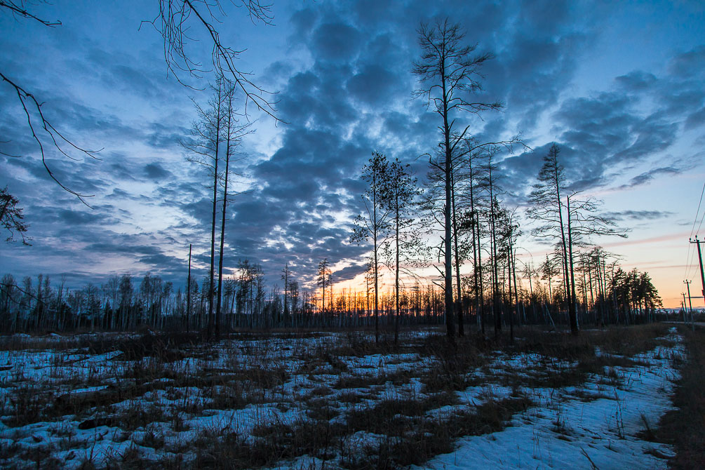Московская область, март, закат, весна, красиво, небо, ярко, золото