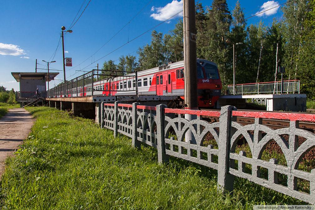 Московская область, лето, Рязанское направление,