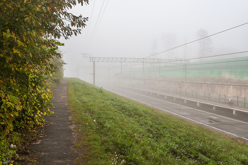 Осень, туман, Московская область, ППЖТ, романтическая железная дорога, красиво, пейзаж, затерянные в лесу