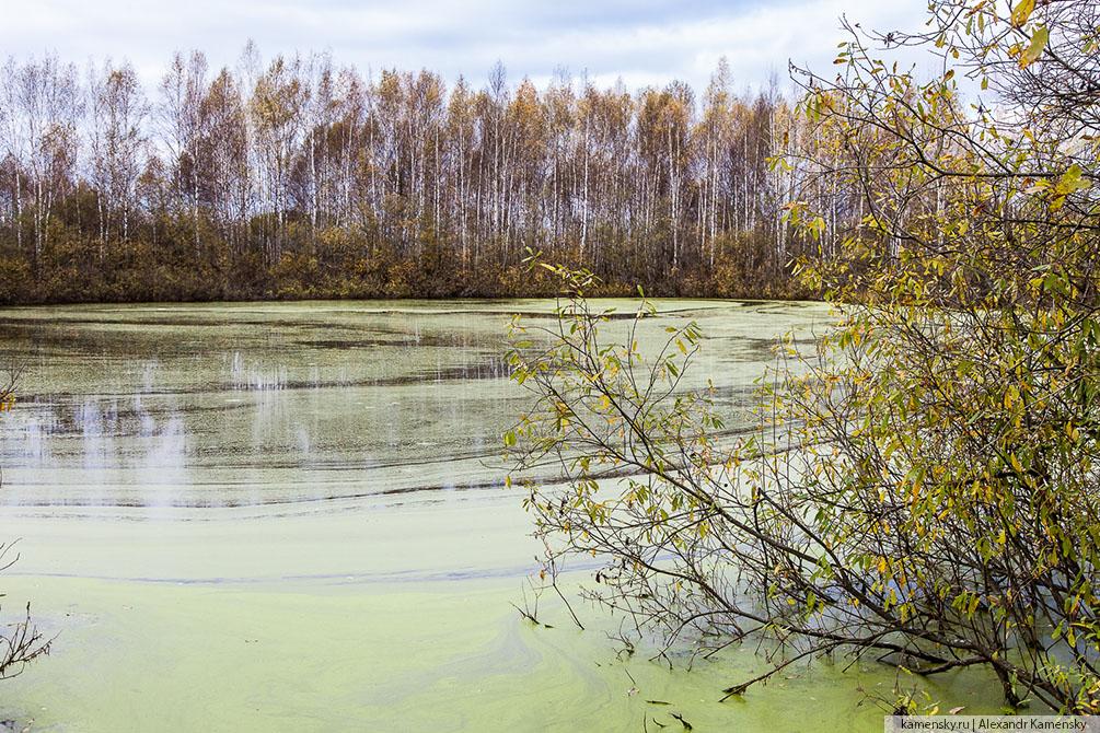 Московская область, осень, водоем, карьер, Дмитров