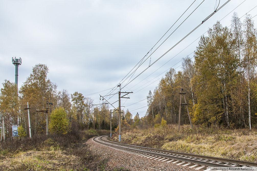 Московская область, осень, БМО, Драчёво