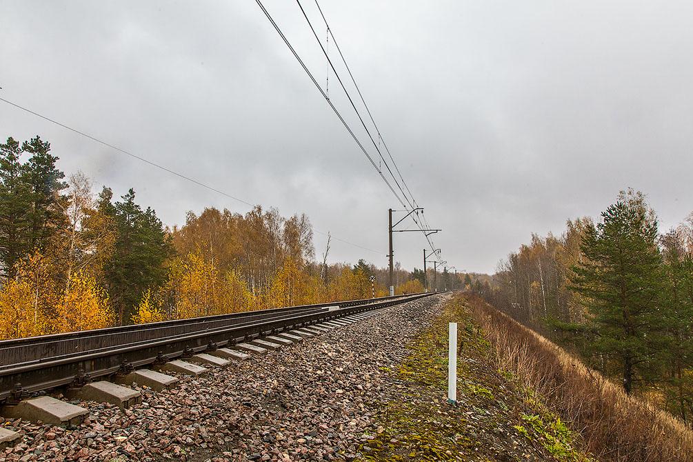 Осень, туман, Московская область, Горьковское направление, новые поезда, Ласточка, Стриж