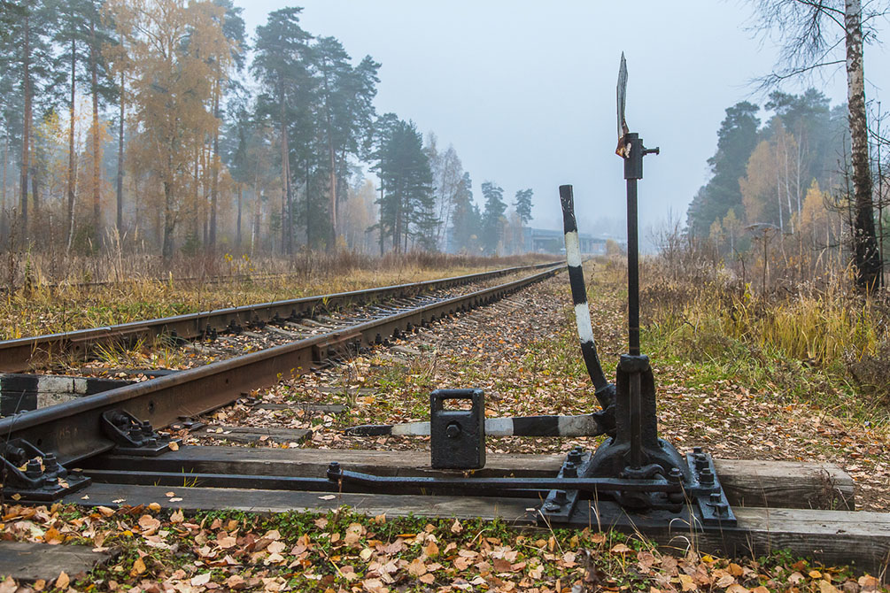 осень, железная дорога, Московская область, Ярославское направление, Красноармейская ветка