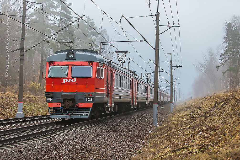 Ярославское направление, электричка, интересные и уникальные фотографии, осень, туман