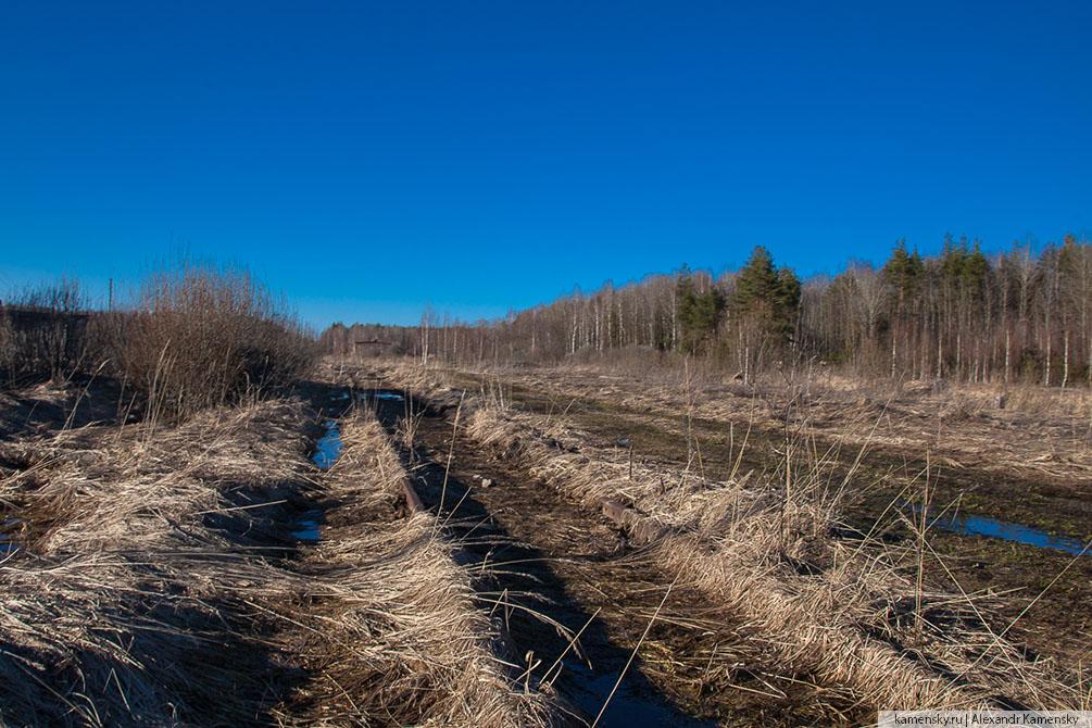 Тульская область, Рязанская область, поля, весна