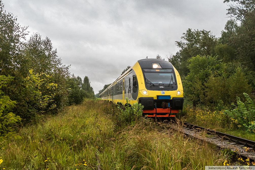 Московская область, осень, Голутвин - Озёры, дизель-поезд ДП-М