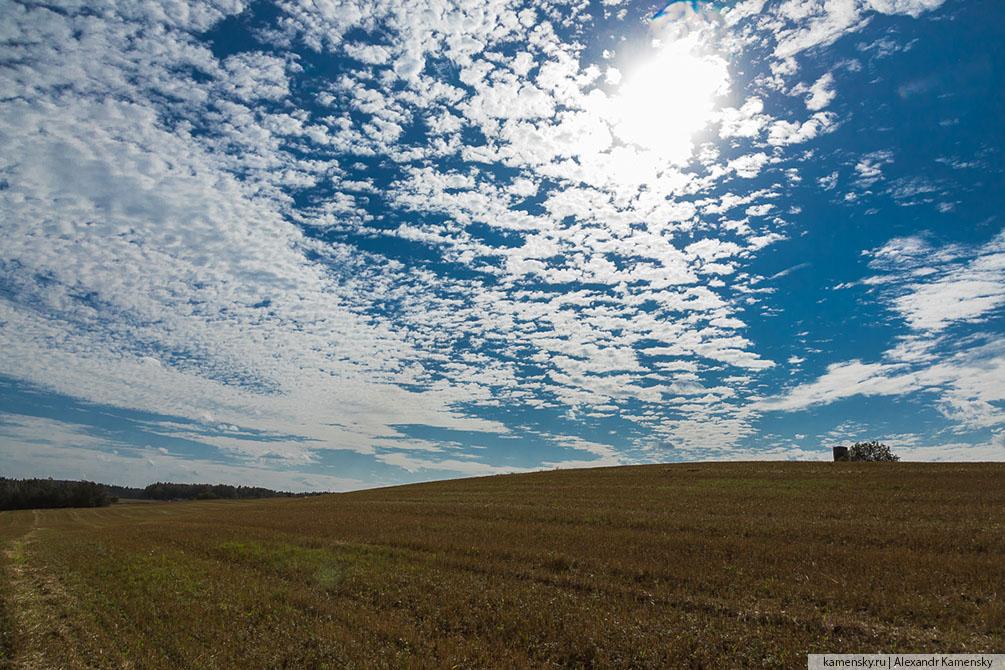 Московская область, осень, природа